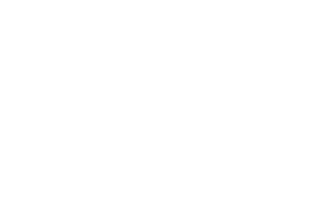 Bloom Krans, Boosted Commerce, Amazon FBA, Amazon Sellers, Acquisition, Seller Resources
